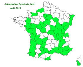 buis france