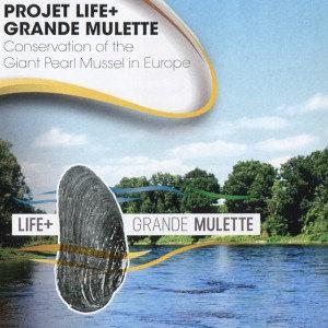grande mulette projet life +