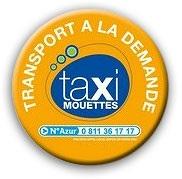 logo taxi mouettes