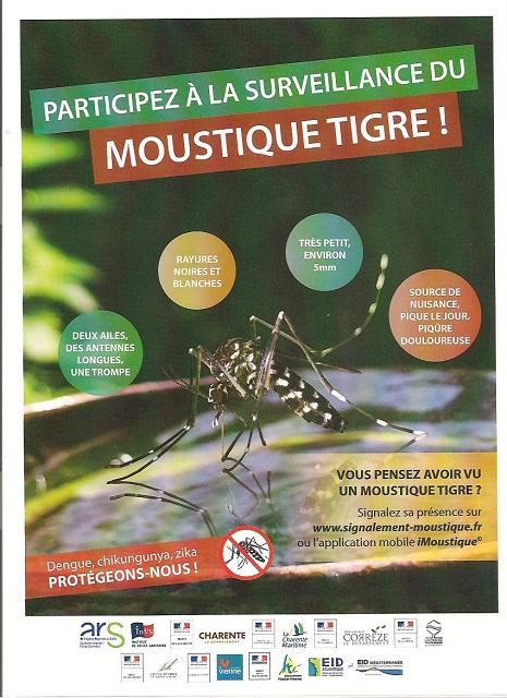 surveillance du moustique tigre