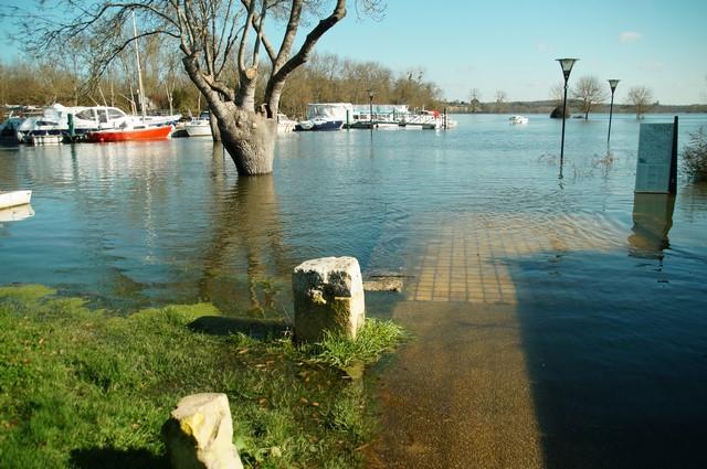 16-02-2016 La Charente (10).JPG