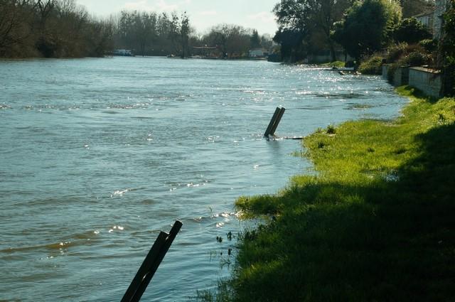 16-02-2016 La Charente (20).JPG