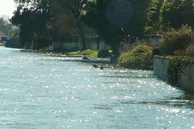 16-02-2016 La Charente (22).JPG