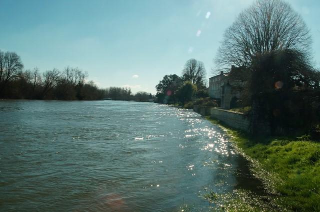 16-02-2016 La Charente (23).JPG