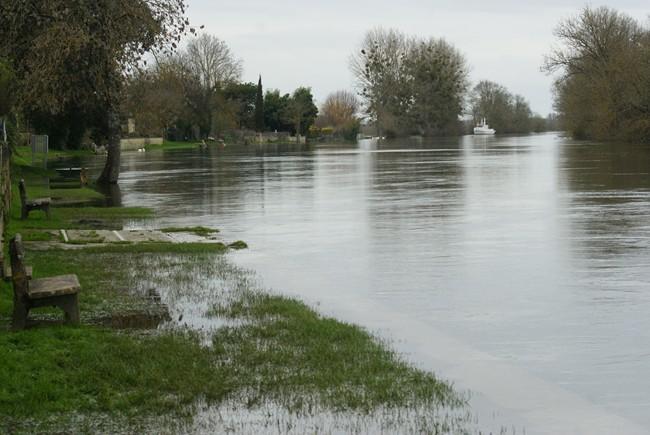 Charente déborde janvier 2013 (8).JPG
