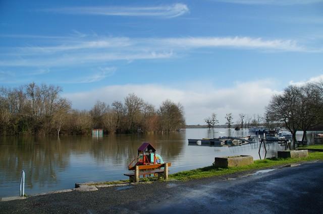 Charente fév 2014  (4).JPG