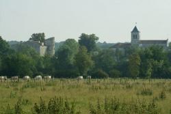 Eglise et la Prévôté(2).jpg