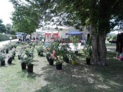 cote jardin 12.jpg