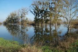 inondations 2018 le bourg (13).JPG