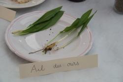 10 février 2018 conférence la cuisine des plantes sauvages (13).JPG