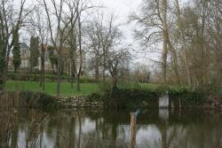 Charente déborde janvier 2013 (6).JPG