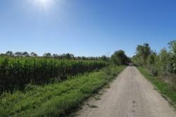 sur la Flow vélo dans la plaine le 25 août 20 (1).JPG