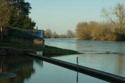 La Charente en janvier 2021 (15).JPG