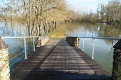 Charente fév 2014  (12).JPG